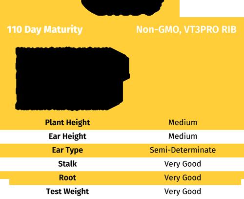 GH 634 CORN Seed non-gmo VT3Pro RIB